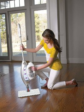 Powerful Steam Mop