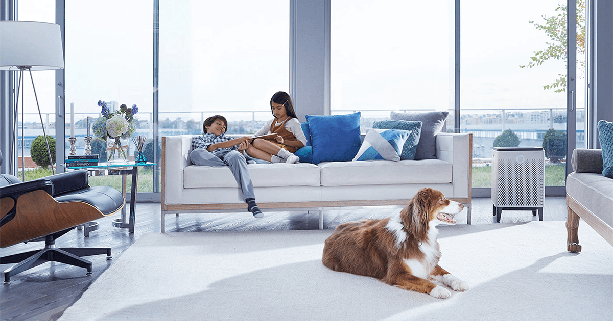 Review: The Office Friendly Coway Airmega 400 Air Purifier