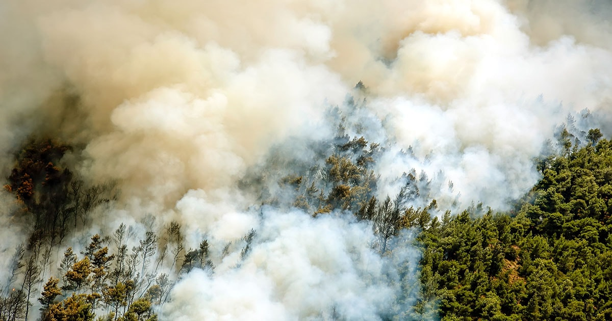 8 Ways To Protect You And Your Family From Wildfire Smok