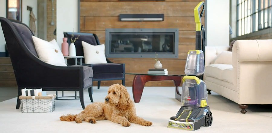 Upright vacuum standing in a room and a dog lying near it