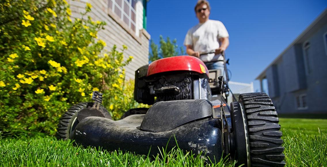 Man mows a lawn on his yard.